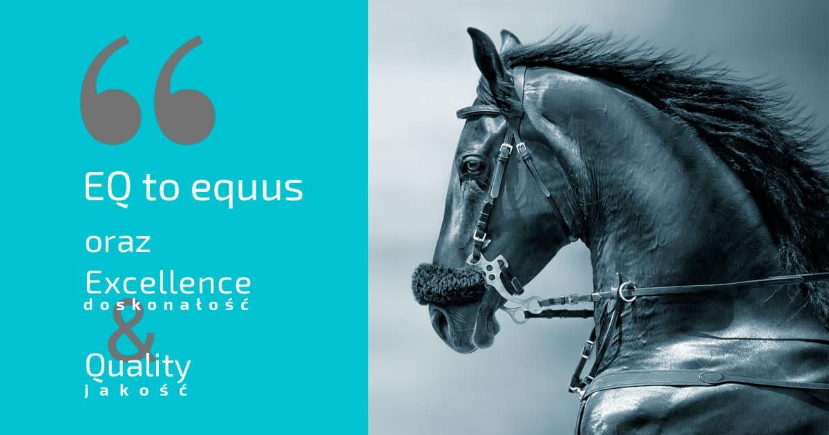 Badania kliniczne koni, Badania laboratoryjne koni, Badanie kupono-sprzedaż koni, Leczenie alergii u koni, Leczenie chorób płuc u koni, Leczenie kolek u koni, Leczenie koni, Lekarz weterynarii Bartosz Antczak, Medycyna koni sportowych, Okulista dla konia, Regeneracja koni, Rehabilitacja koni RTG koni, Szczepienie koni, Szycie ran koni, Terapia przeciwbólowa koni, Terapia regeneracyjna koni, USG koni, Weterynarz koni, Zapobieganie schorzeniom ortopedycznym koni.