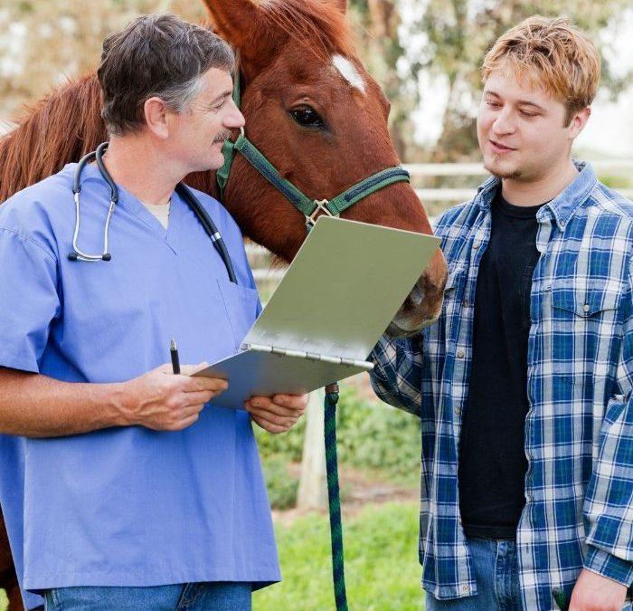 Badania laboratoryjne w profilaktyce koni