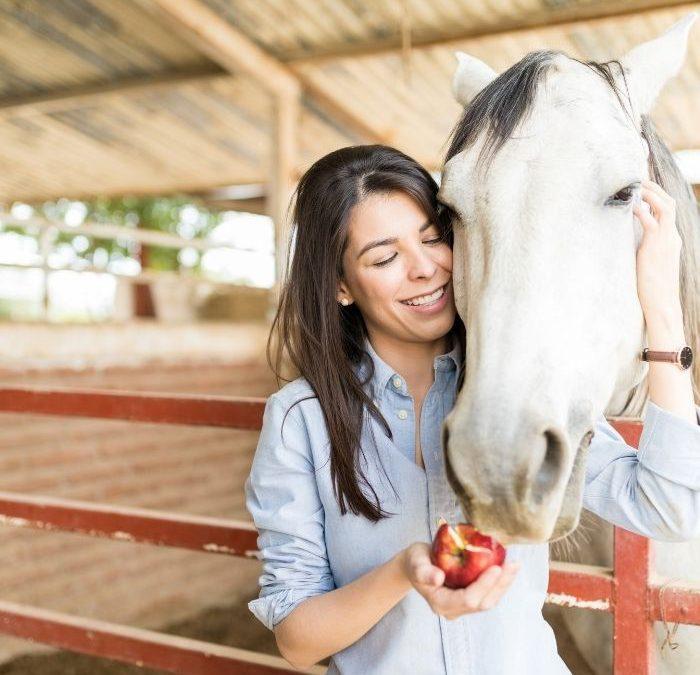 Jak karmić konia? Poznaj naturalne żywienie koni